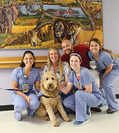 Elsa is surrounded by human members of her fan club – staffers from Children's Hospital of Richmond at VCU – who appreciate the benefits of animal interaction for patients.