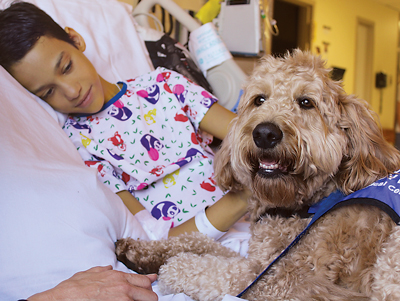For children and their families, time spent with a therapy dog like Elsa can help alleviate stress during a traumatic experience.